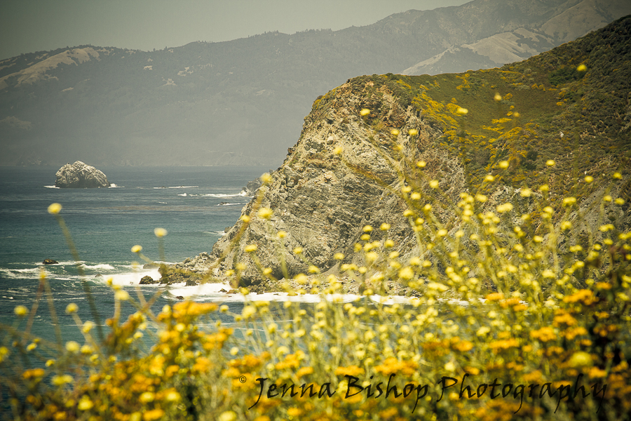 California Road Trip Photos